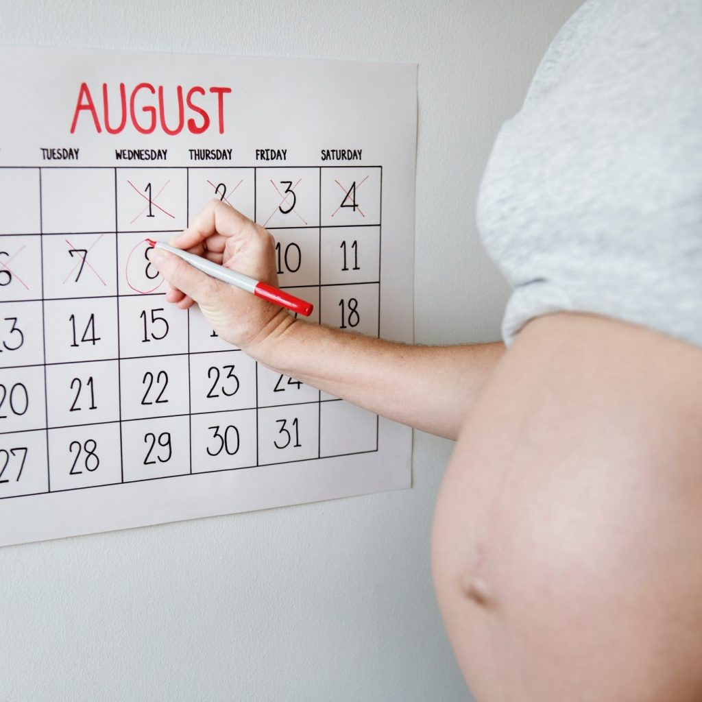 belly-calendar-countdown